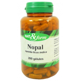 Nopal