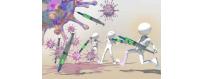 Système immunitaire / Défenses Naturelles de chez  CelluleFruitée - La Nutrition Colorée