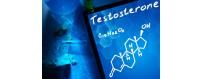 Stimulation Testostérone Naturel / Tonus Sexuel / Système Hormonal...
