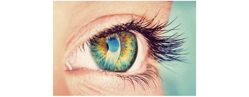Santé des yeux et vision de chez  CelluleFruitée