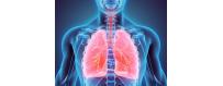 santé des poumons et des voies respiratoires de chez  CelluleFruitée - La Nutrition Colorée