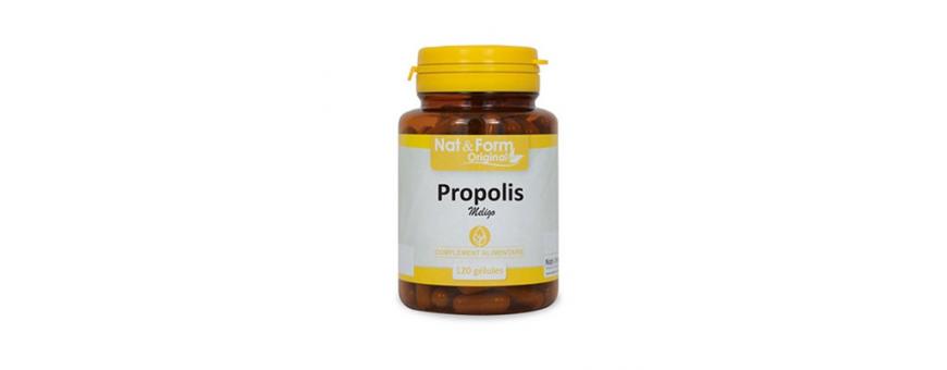 Découvrez la propolis produit de la ruche de chez CelluleFruitée