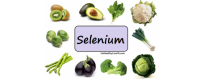 Sélénium - CelluleFruitée - La Nutrition Colorée