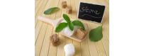 Alimentation/ Boisson pour Diabétique - CelluleFruitée - La...