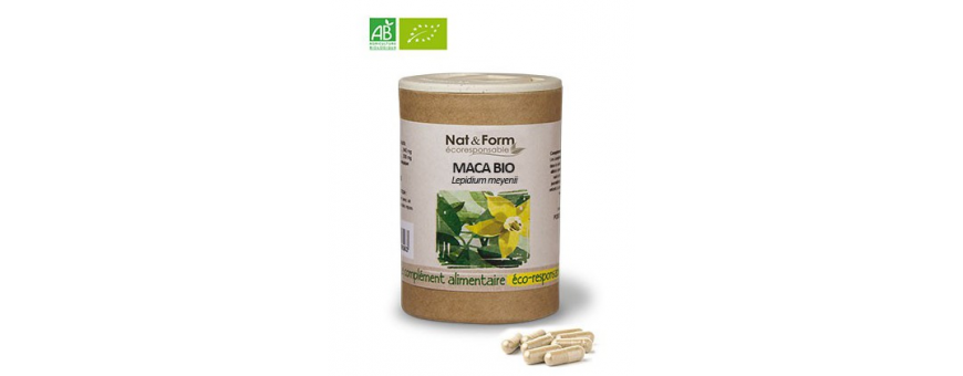 Maca - CelluleFruitée - La Nutrition Colorée