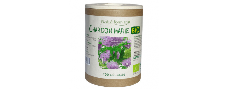 Chardon Marie - CelluleFruitée - La Nutrition Colorée