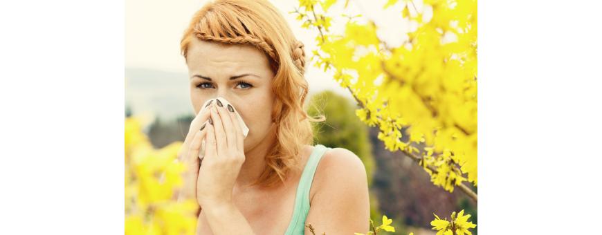 Antiallergique Antihistaminique Naturel