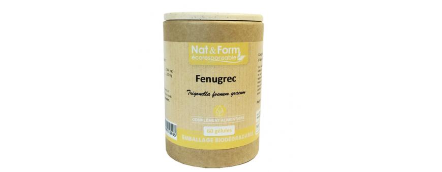 Fenugrec - CelluleFruitée - La Nutrition Colorée