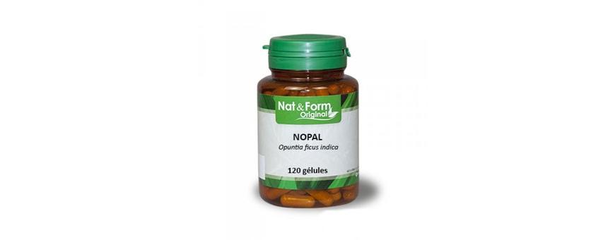 Nopal - CelluleFruitée - La Nutrition Colorée