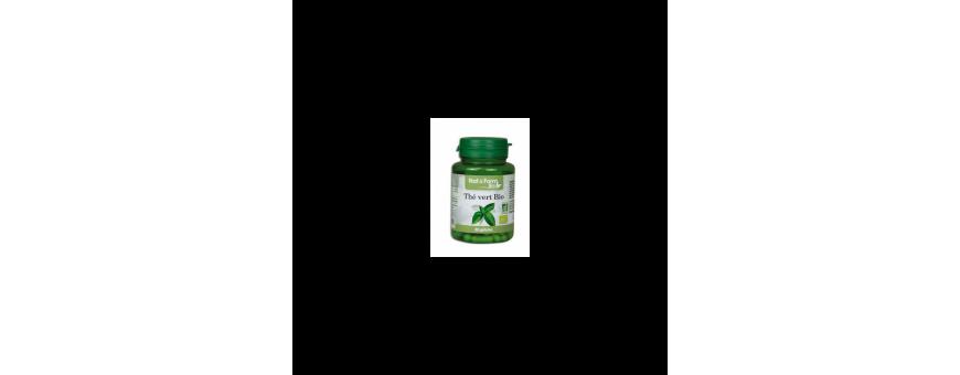 Thé Vert - CelluleFruitée - La Nutrition Colorée